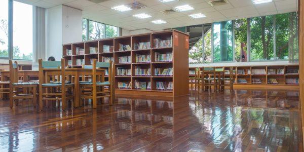 Troffer lighting in library