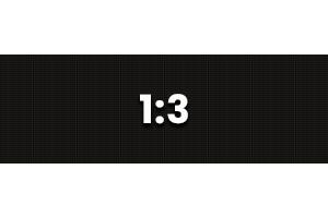 1:3 Ratio